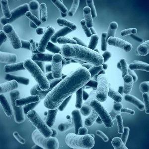 La mysophobie, la peur des microbes, comment s'en débarrasser?