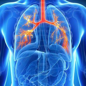 Symptômes de la bronchite