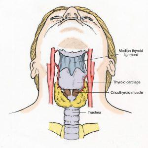 Symptômes cancer de la gorge